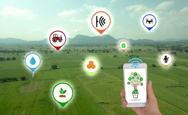 互联网巨头的数字农业布局,谁能抢下生鲜电商下一个行业风口?-天使学社